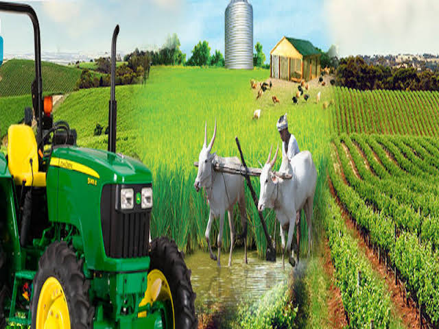 Agric Ministry assures of partnership for increased productivity