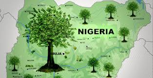 THE PURSUIT OF GREEN ECONOMY FOR THE NIGER DELTA AND EMERGING OPPORTUNITIES FOR EX-AGITATORS