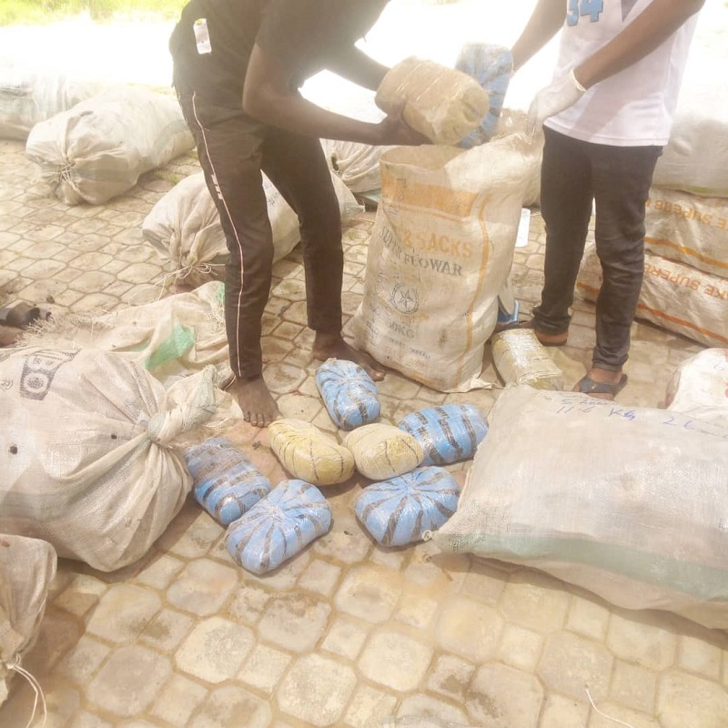 NDLEA intercepts 237.005kg of Cannabis in Kogi