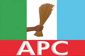 Delta LG polls: APC candidate, Afe rejects Okpe results, seeks cancellation