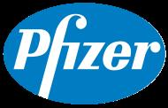 Pfizer appoints Patrick van der Loo as Regional President for Africa, Middle East